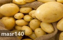 الزراعة: فتح السوق التركية أمام البطاطس المصرية