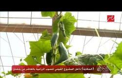 عمرو أديب يتناول خضروات صوبات المشروع القومي للصوب الزراعية