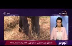 اليوم - وزارة التموين تبدأ استلام محصول القمح المحلي من المزارعين