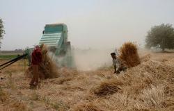 """مصدر سوري يكشف حقيقة إيقاف """"قسد"""" لعملية تسليم القمح في الحسكة"""