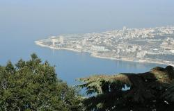 بالفيديو... كائنات بحرية تجتاح سواحل لبنان بالآلاف