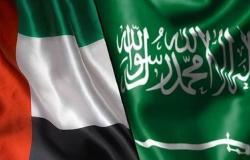 7 لجان لتحقيق التكامل بين السعودية والإمارات بعدة مجالات