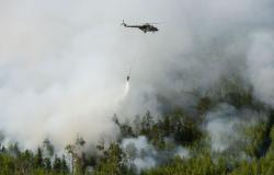 مساحة حرائق الغابات في روسيا تتسع خلال الـ24 ساعة الأخيرة 7.7 ألف هكتار