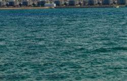 """مياه وكهرباء الإمارات تتفق و""""أكوا باور"""" على تغذية محطة """"الطويلة"""""""