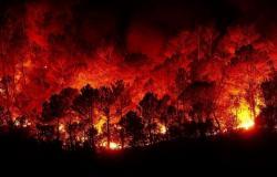 حرائق كبيرة في محافظات حمص وطرطوس واللاذقية السورية...صور