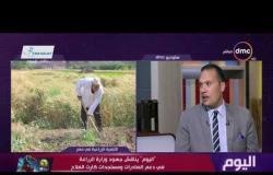 """اليوم - """"اليوم"""" يناقش جهود وزارة الزراعة في دعم الصادرات ومستجدات كارت الفلاح"""