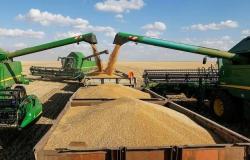 الحبوب السعودية تودع الدفعة التاسعة من مستحقات موردي القمح المحلي
