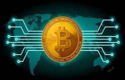 تداول البيتكوين مقابل تداول العملات – ما الفرق؟