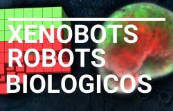 """تعرف على Xenobot.. أول """"روبوت حي ذاتي الالتئام"""""""