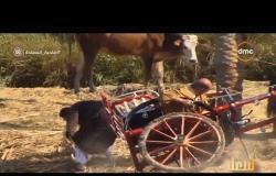 صاحبة السعادة - لطفي لبيب خلى الحصان يوقع كريم عبد العزيز ف الترعة.. شوف بنفسك