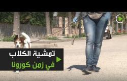 مجموعة خيرية تمشي كلاب الأشخاص في العزل الذاتي