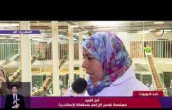 نشرة ضد كورونا - انتظام عمليات التصدير للمنتجات الزراعية المصرية من الخضراوات والفاكهة للخارج