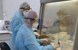 فلسطين: 229 إصابات جديدة بفيروس كورونا