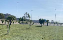 """دعم الحزام الأخضر في """"شفا الطائف"""" بـ 11 ألف م2 مسطحات خضراء"""