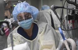 بلجيكا: 544 إصابة بفيروس كورونا