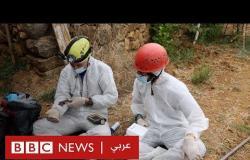 فيروس كورونا بين الإنسان والوطواط وسباق إنتاج اللقاح للبشر