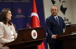 الخارجية السويدية تطالب أنقرة بالانسحاب من سوريا.. وتركيا: من أنتم!