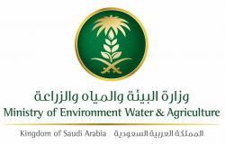 """""""فلنجعلها خضراء"""".. حملة لـ""""البيئة"""" في متنزه سيسد الوطني بالطائف"""