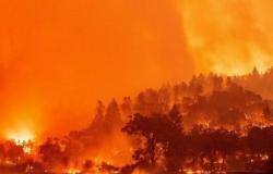 واشنطن.. إجلاء 60 ألف شخص في كاليفورنيا نتيجة انتشار حرائق الغابات