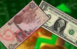 الدولار ينهار أمام الجنية المصري... وخبراء: سيستمر في الانخفاض
