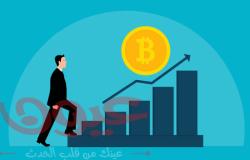 ما الفرق بين الاستثمار في الأسهم والاستثمار في بتكوين؟