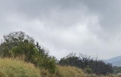 """بالفيديو.. الأمطار المتوسطة تهطل على """"باشوت عسير"""""""