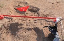 """""""مسام"""" ينتزع 1.500 لغم في اليمن خلال الأسبوع الثاني من يناير"""