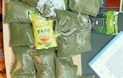 جمارك مطار القاهرة تضبط كمية من نبات القات المخدر