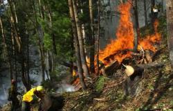روسيا تحارب حرائق الغابات بالطائرات العسكرية (صور)