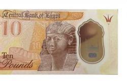 «صعب تزويرها وعمرها الافتراضي أطول»..محلل اقتصادي عن العملات البلاستيكية الجديدة