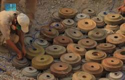 """""""مسام"""" ينتزع 1.351 لغماً في اليمن خلال أسبوع"""
