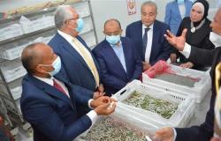 وزراء التنمية المحلية والصناعة والتموين يفتتحون بعض المشروعات بالوادي الجديد (صور)