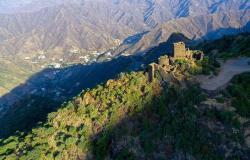 زراعة مليون شجرة في السودة بالتزامن مع مبادرة السعودية الخضراء