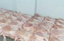 أسعار مخفضة للخضروات واللحوم والدواجن بالمجمعات الاستهلاكية (تفاصيل)
