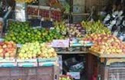 ارتفاع أسعار الخضر والفاكهة واللحوم والدواجن والأسماك فى الأسواق وسط حالة من الركود