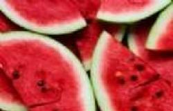 البطيخ يحفز عمل الكلى ويقلل مخاطر تكوين الحصى بها