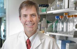 اكتشاف جين جديد يساهم تثبيطه فى منع الإصابة بسرطان الثدى الخبيث