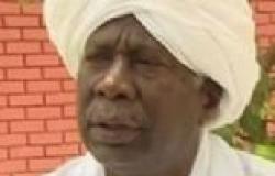 """مجلس السلم والأمن الإفريقي يقرر إيقاف استفتاء """"آبيي"""" من جانب واحد"""