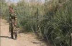 العراق: روسيا بدأت في تسليمنا السلاح وفق صفقة جديدة