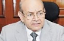 """تخصيص عشرة لجان بالجيزة لتصويت الوافدين من خارج """"القاهرة الكبرى"""""""