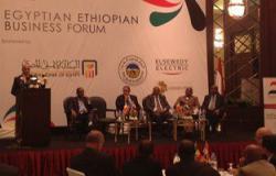 """""""المصرى الإثيوبى"""": ٥٠٠ مليون دولار حجم التبادل التجارى المستهدف خلال ٣ سنوات"""
