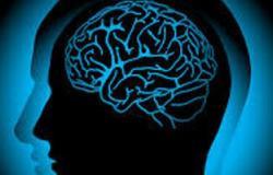 المصابون بأورام المخ يعيشون حياة أطول باستخدام العلاج الكيميائى