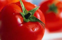 دراسة: الطماطم تحد من خطر الإصابة بسرطان البروستاتا